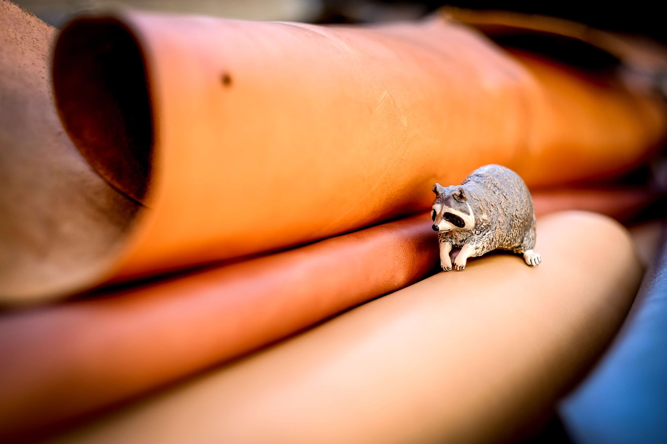 cuir_opossum_05